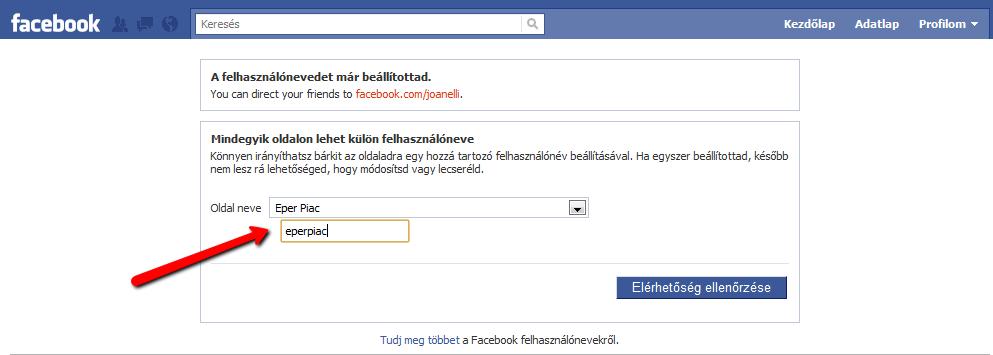 Username beállítás